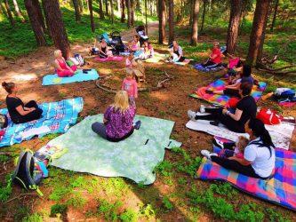 Waldzwerge - für Eltern mit Kindern von ca. 1,5 - 5 Jahren @ Wald